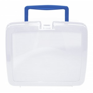 Translucent School Lunch Box with Blue Handle | School Lunch Boxes | Amey Online